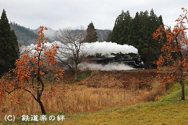 20161203野沢011DX2