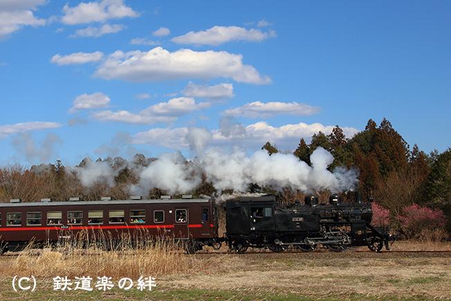 20140322多田羅045D3