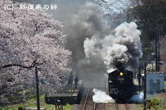 20140405久下田035D3
