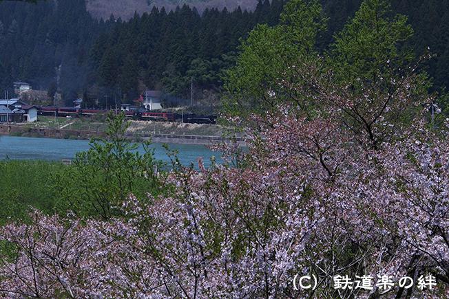 20140427津川5D2