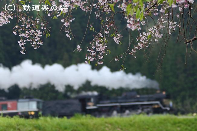 20140503上野尻035D3