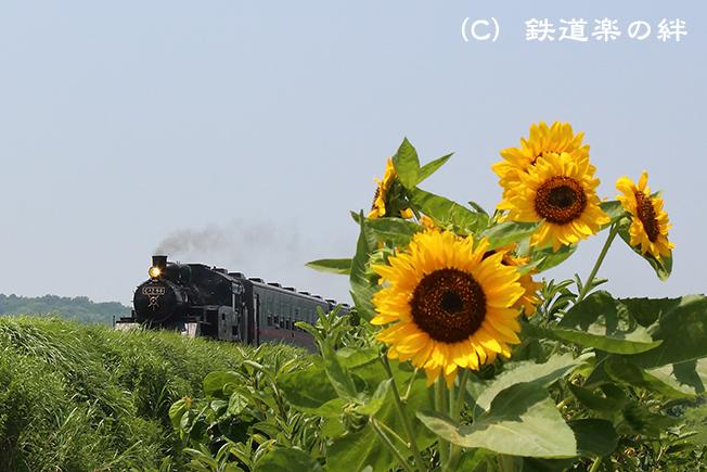 20140726益子5D3