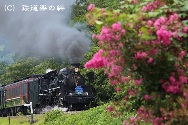 20140813荻野5D3