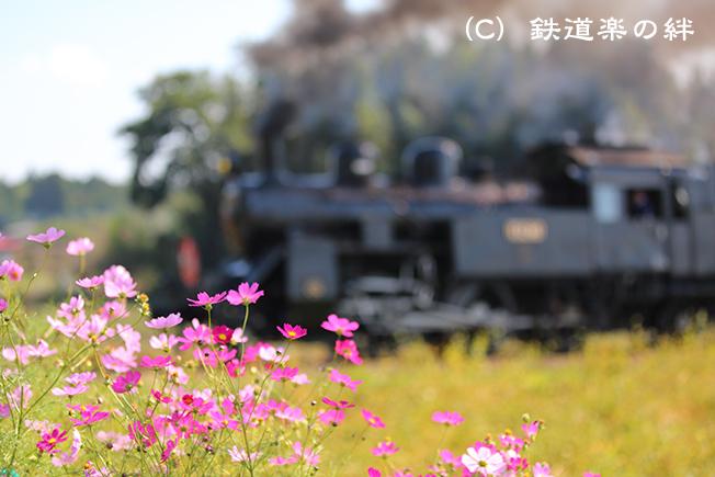 20141019多田羅5D3