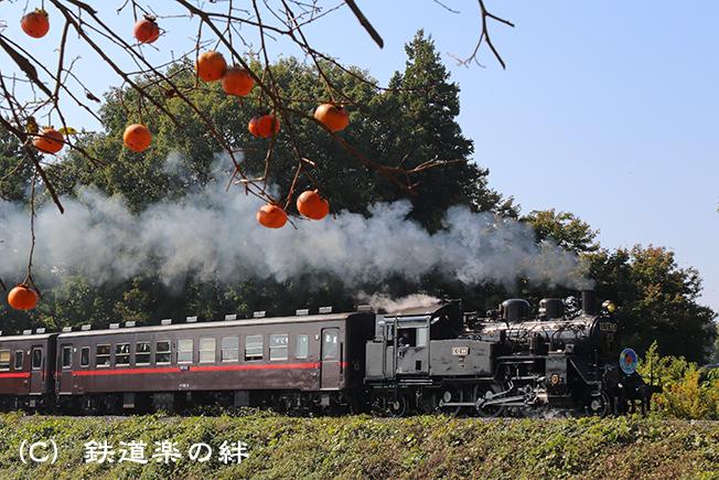 20141025折本025D3