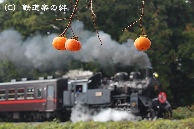 20141026折本045D3