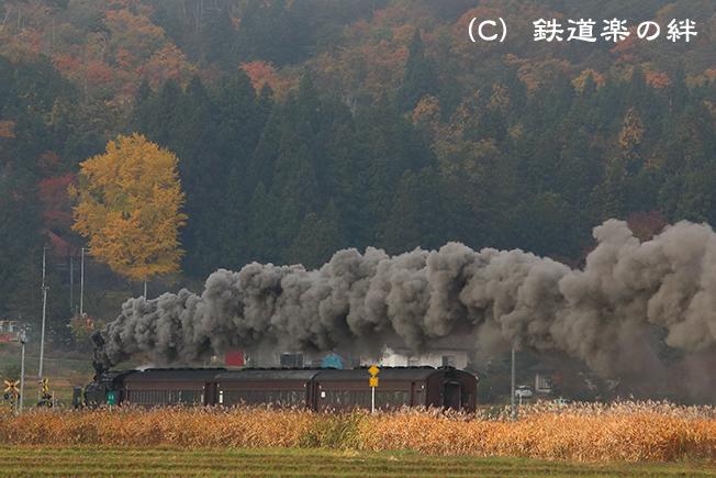 20141106会津坂下035D3