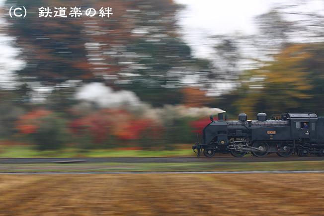 20141129折本5D3