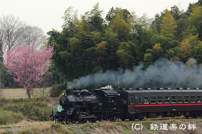 20150328久下田5D3