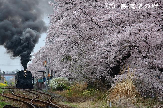 20150405久下田035D3