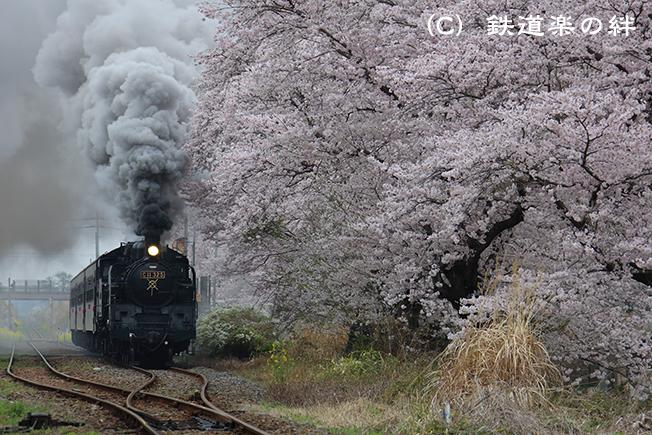 20150405久下田055D3