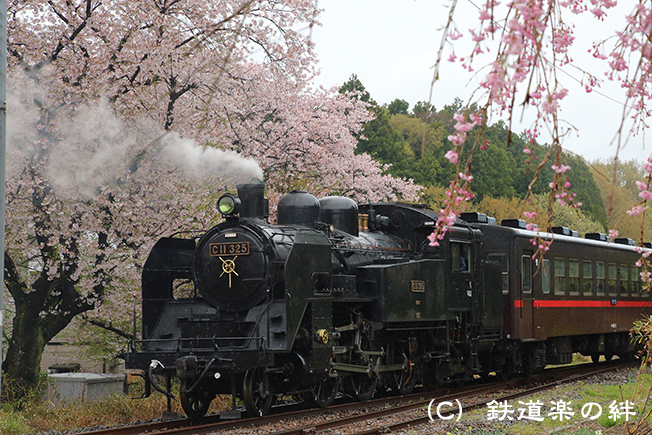 20150411久下田5D3