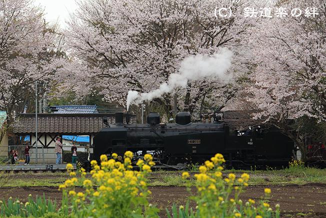 20150412多田羅5D3