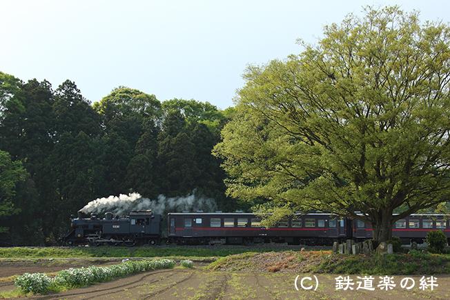 20150425真岡5D3