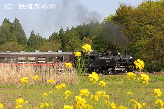 20150425多田羅5D3