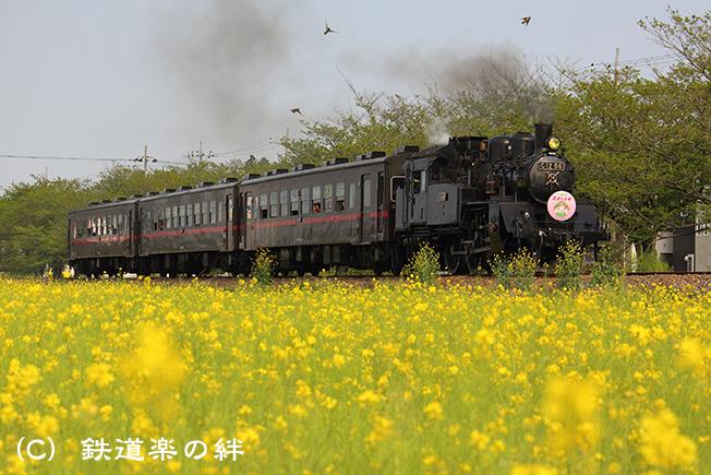 20150425北真岡5D3