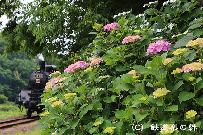 20150607久下田5D3