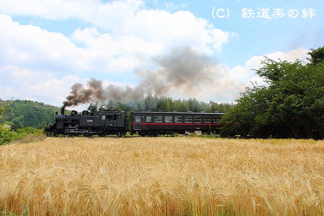 20150607多田羅5D3