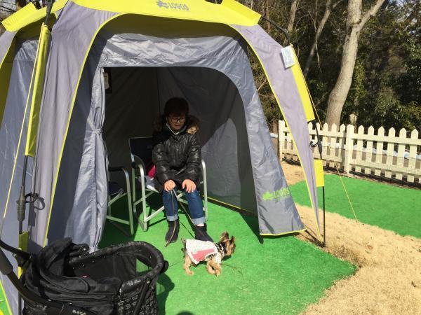 016小型犬ドッグラン内_convert_20170131180832
