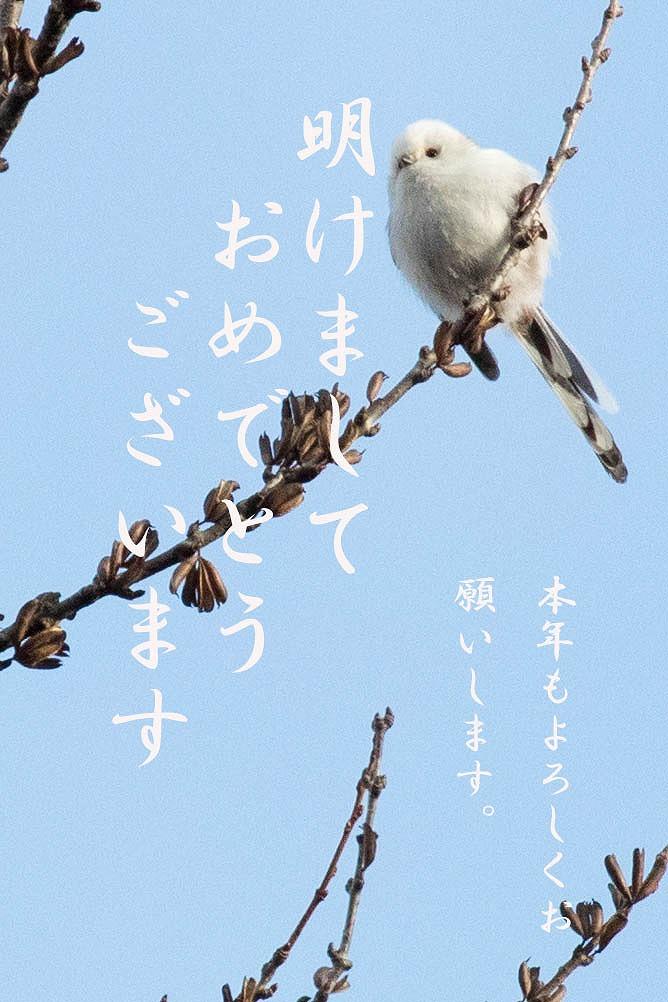年賀Blog用
