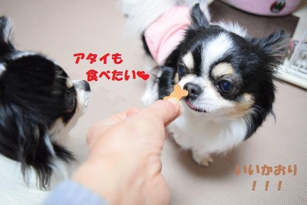 DSC_0079おやつ1