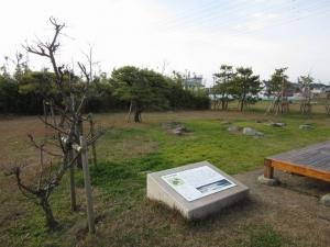 勝瑞館/枯山水庭園