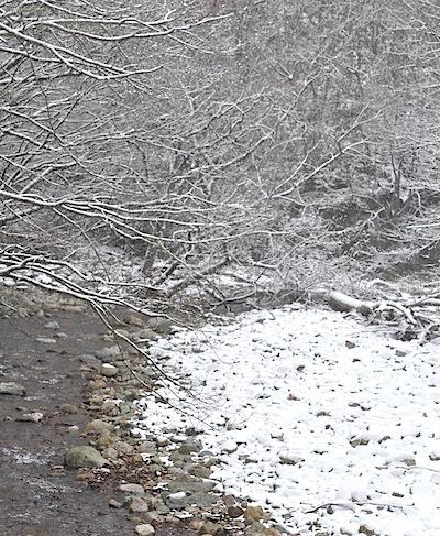 12月の渓流