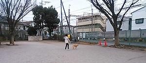 NCM_5363.jpg