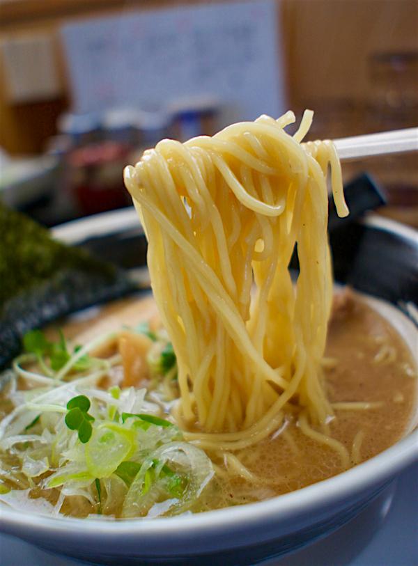 らぁ麺 膳房@鹿沼市栄町 2 醤油らぁ麺2