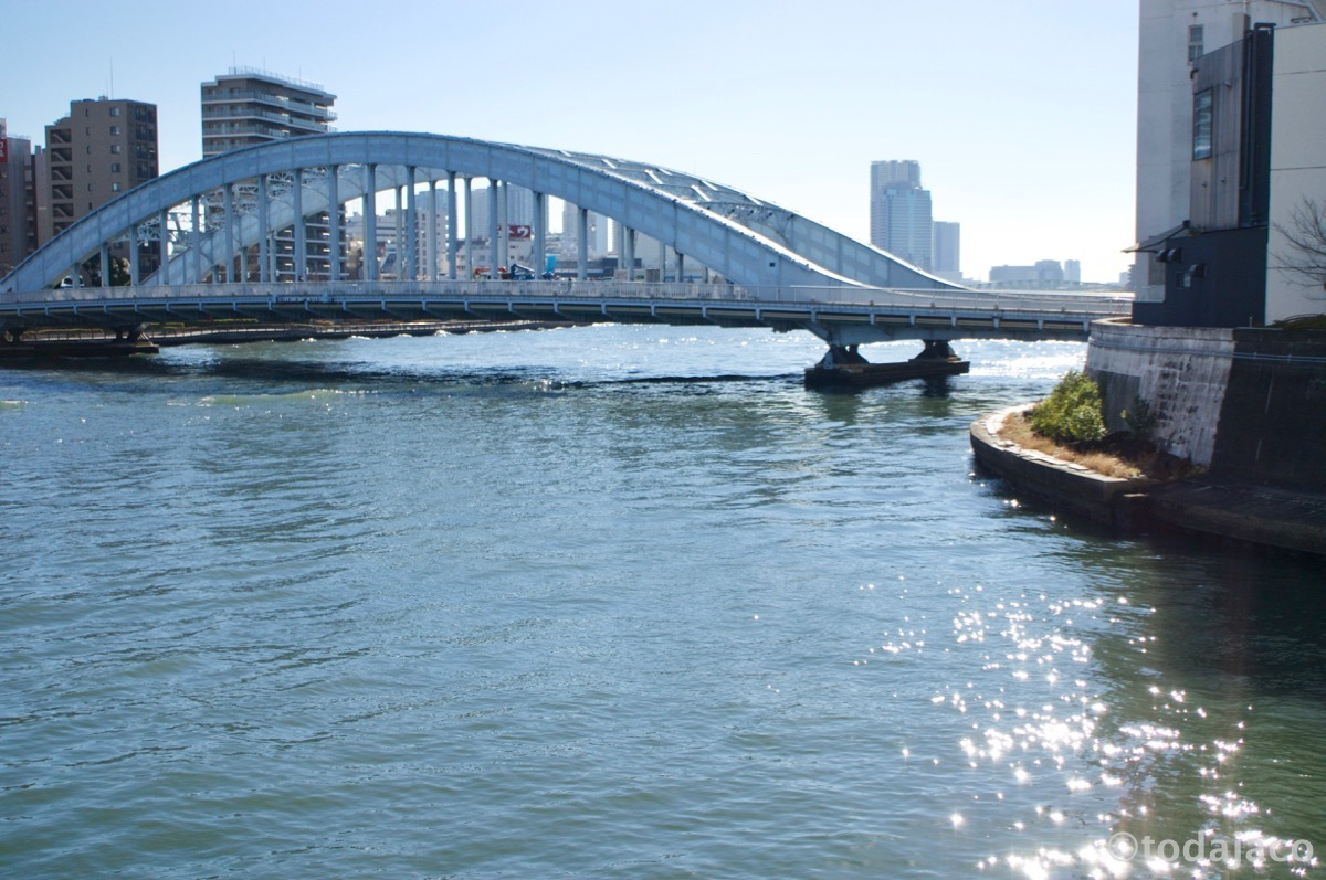 隅田川と永代橋を臨む