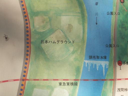 多摩川グラウンド