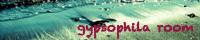 gypsophila room
