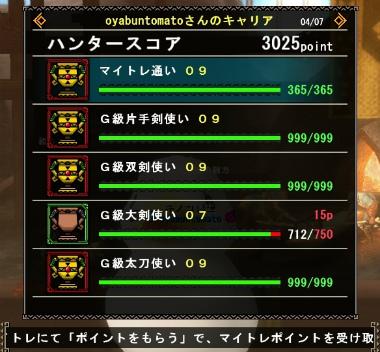 mhf_20161230_222249_502.jpg