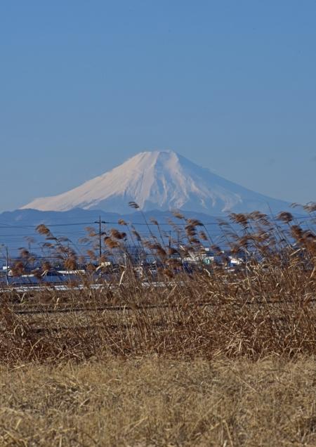 富士山1 DSC_0016