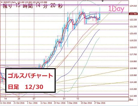 daily1230_20161230155019e7a.jpg