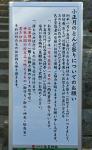長興寺とんど焼き注記1701