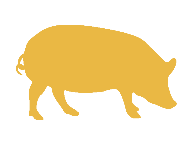 金の豚1701