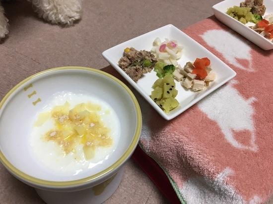ココモコ おせちを食べました♪ 愛犬だいすきお正月料理2