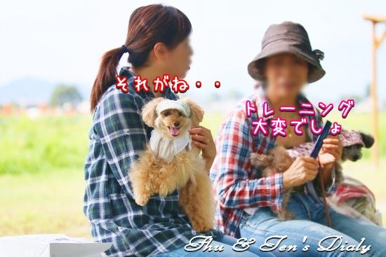 002IMG_7300d.jpg