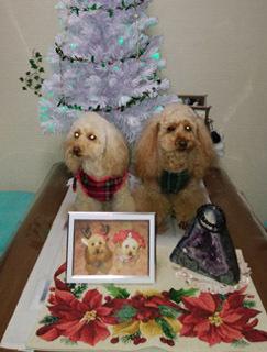 クリスマスっぽい記念写真4