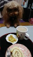 時間にはお茶2