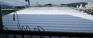 0115 初雪~