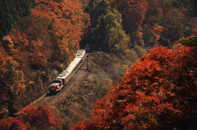 鉄道写真1199