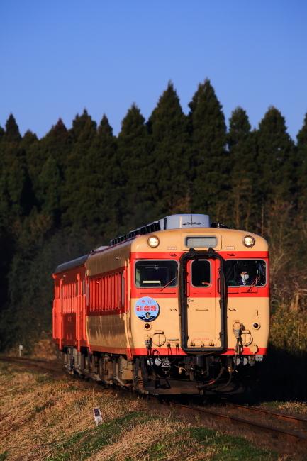 鉄道写真1336