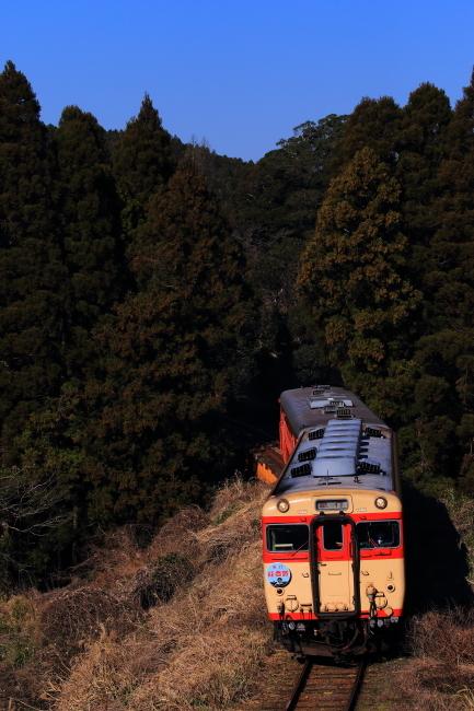 鉄道写真1384