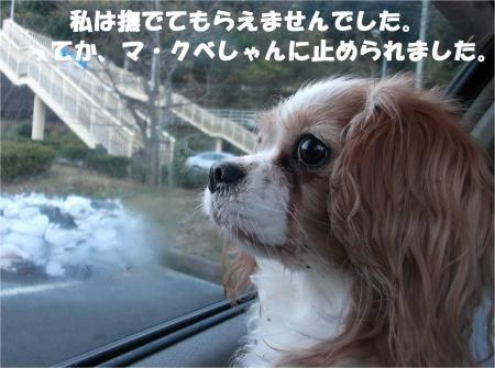 02_convert_20161217173211.jpg