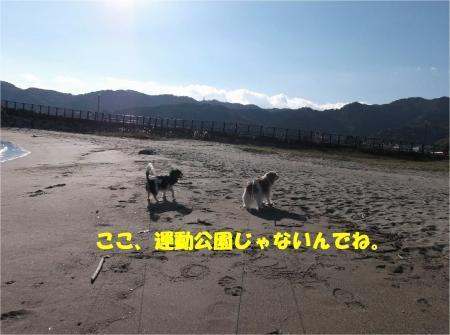 03_convert_20161212185711.jpg