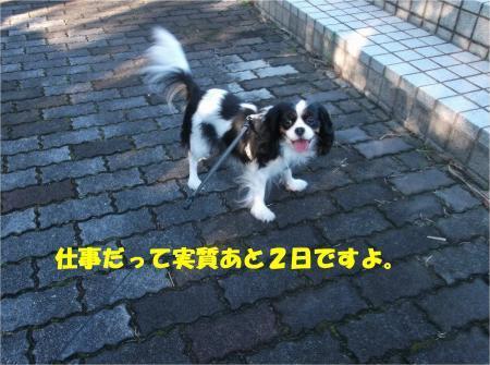 03_convert_20161226175456.jpg