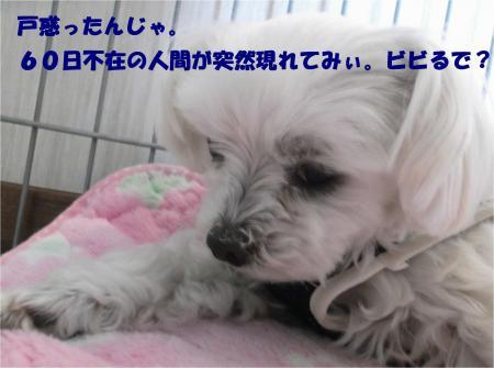 04_convert_20170126185559.jpg