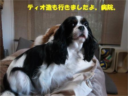 05_convert_20161213183710.jpg